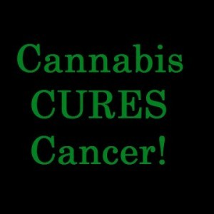 Cannabis CURES Cancer - YouTube